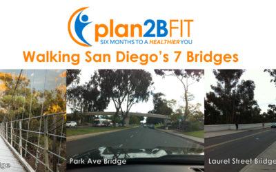 7 Bridges of San Diego Walk